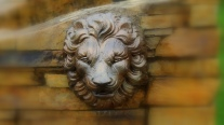 Lion's Head on the Wall