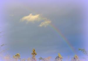 Rainbow 1028201403