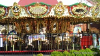 The 36-foot carousel has two sleighs and thirty horses for the kids to ride on.