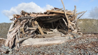 Spotted this driftwood hut someone built on the beach near Keystone ferry last year (2013)!