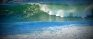 Surf's Up 1110201404