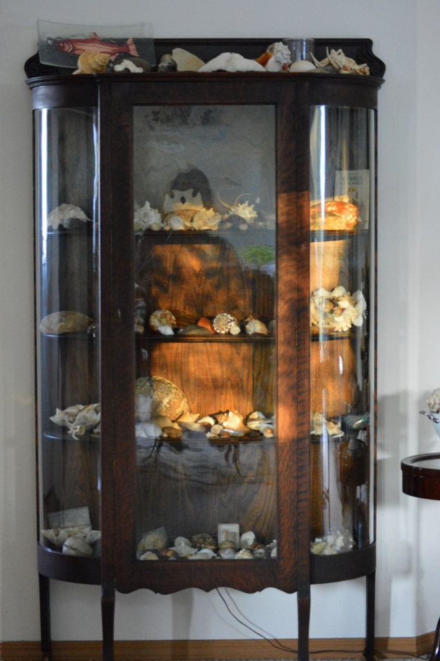 Same curio filled with my sea shells!