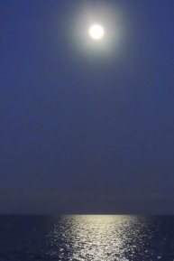 Full Moon 928201513