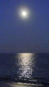 Full Moon 928201514