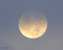 Full Moon 928201523