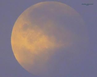 Full Moon 928201526