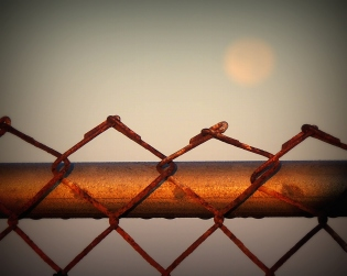 Looking at the fence with the moon in the background.....