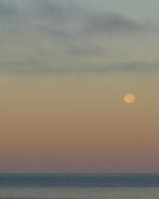 Full Moon 928201536