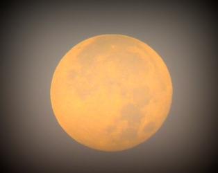 Full Moon 928201537