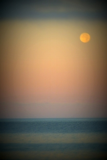 Full Moon 928201539