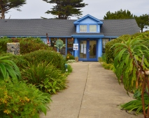 Mendocino Art Center 322201503