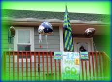 My display of support during last year's Championship games.