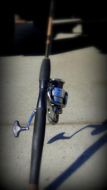 My Gatorback trout pole....