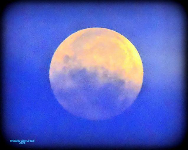 Full Moon 928201521