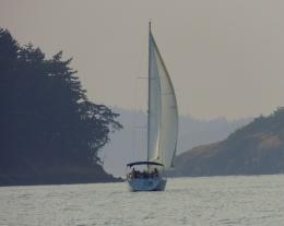 Sailing 76201528
