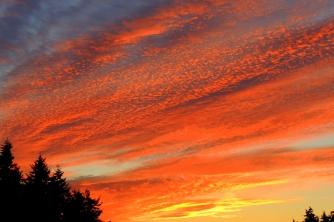 Brilliant Morning Sky: 2/7/16...