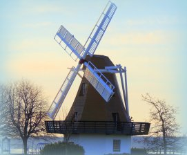 Oak Harbor's Windmill: Top 20% award for the day of 1/26/16...