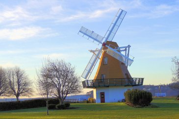 Windmill: 3 Top 20% awards for day, week and month.