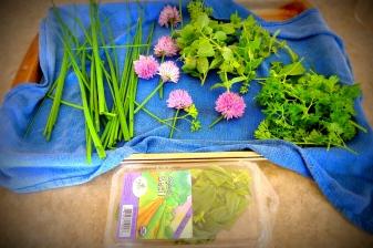 Home grown herbs!
